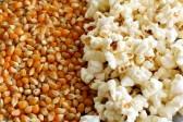14975976-popcorn-and-kernels