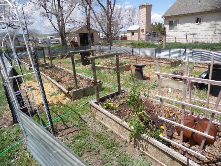 Rurban Farm (urban/rural)