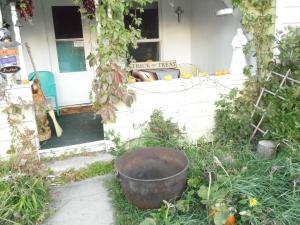A line of small pumpkins and a cauldron greet visitors.