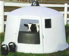 goat house