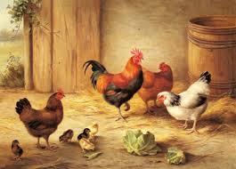 chicken paint