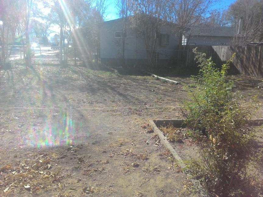 Gardening the Driveway