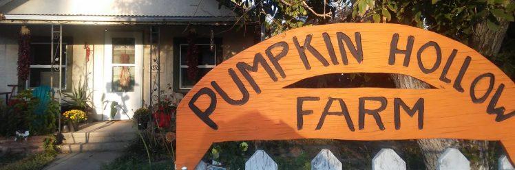 cropped-pumpkin-hollow.jpg