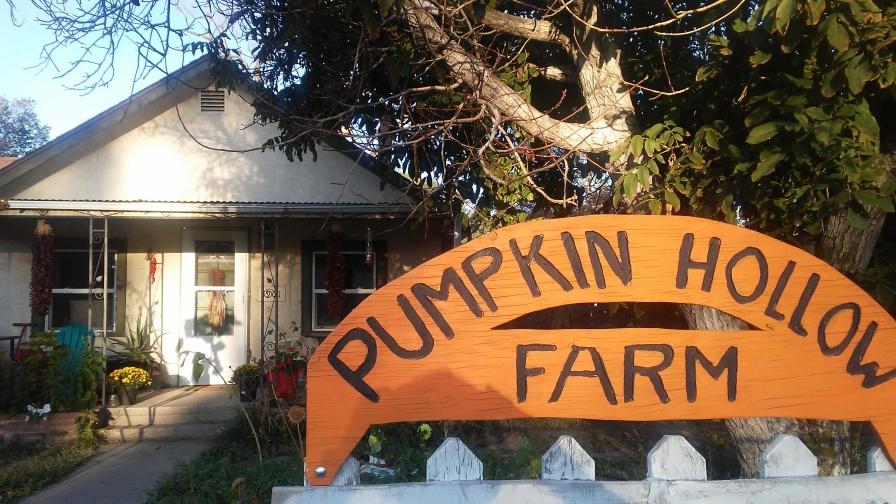 pumpkin hollow